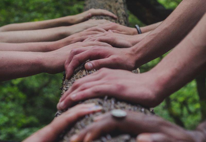 davanja-zajednica